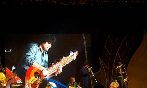 Niladri Kumar Live